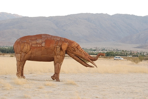 Eye candy in Borrego Springs, CA