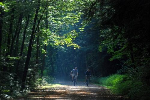 Rail trail bikers near Rockwoods, PA
