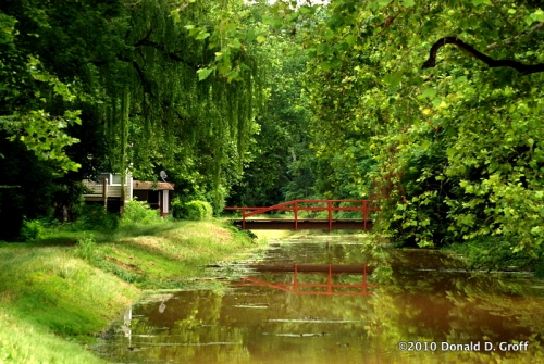Delaware Canal, almost summer