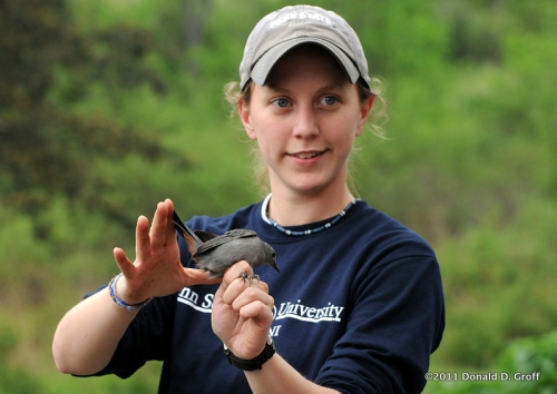 Penn State student with catbird, Bald Eagle State Park
