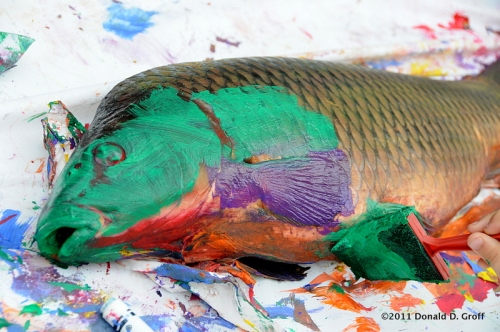 Shad as canvas, Lambertville Shad Fest